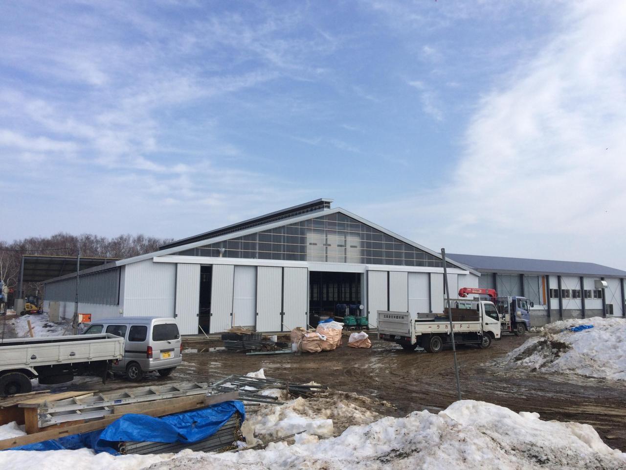 大規模生産牧場新築工事 工事中
