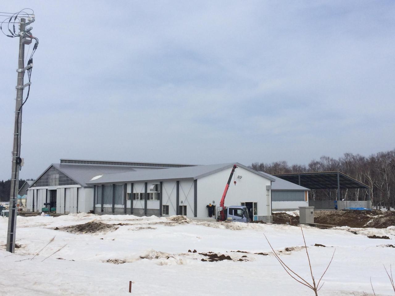 大規模生産牧場新築工事 完成間近